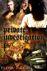 Private Investigation by Fleur T Reid